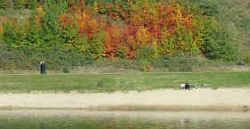 Herbst am See II