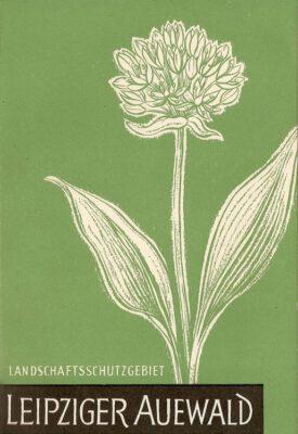 """Broschüre """"Leipziger Auewald"""" von 1962"""